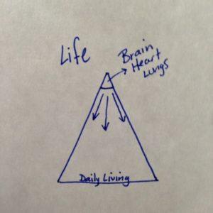 Life pyramid 1